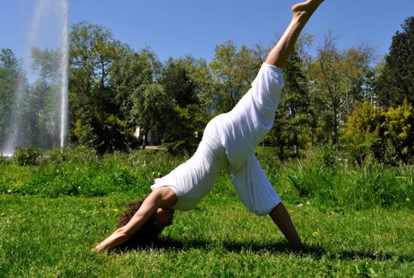 cours de hatha yoga ramonville alma maria urango naturopathe et yogath rapeute. Black Bedroom Furniture Sets. Home Design Ideas